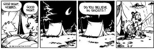 Calvin and Hobbes go camping